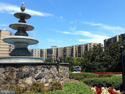 Mclean Condo For Sale: 8370 Greensboro Drive #1007/100
