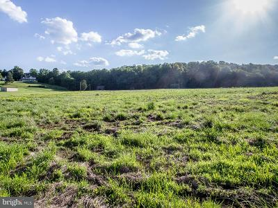Centerville, Clifton Residential Lots & Land For Sale: 12231 Chapel Road