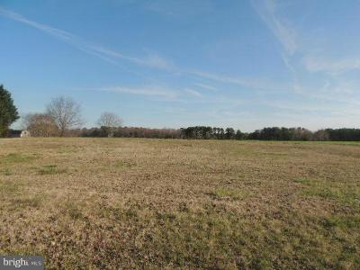 Wicomico County, WICOMICO COUNTY Residential Lots & Land For Sale: 25614 Ocean Gateway
