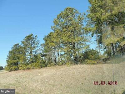Wicomico County, WICOMICO COUNTY Residential Lots & Land For Sale: Ocean Gateway Highway