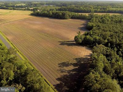 Wicomico County, WICOMICO COUNTY Residential Lots & Land For Sale: Parsonburg Road