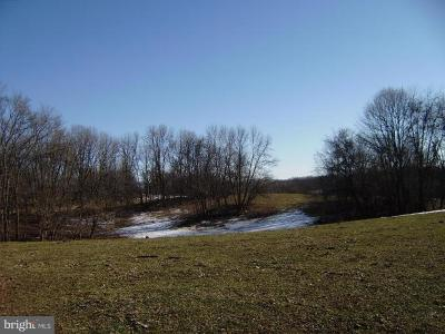 Hagerstown Residential Lots & Land For Sale: Old National Pike
