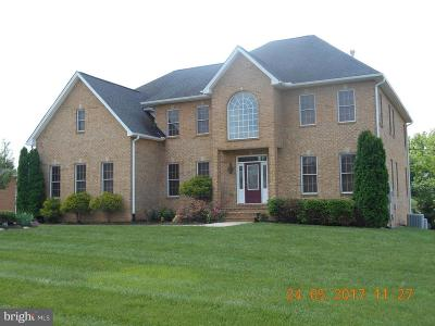 Hagerstown Single Family Home For Sale: 10916 Sassan Lane