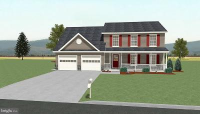 Hagerstown Single Family Home For Sale: 13163 Salem Church Road