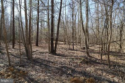 Mechanicsville Residential Lots & Land For Sale: 26210 Baptist Church Road
