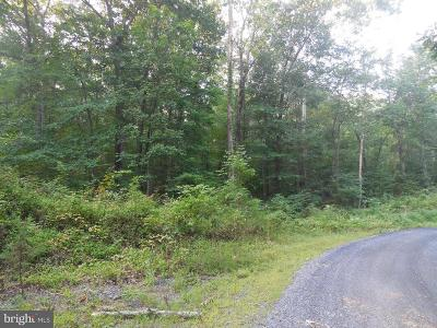 Residential Lots & Land For Sale: Stoney Mountain Drive