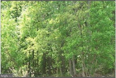 Charles County Residential Lots & Land For Sale: Holly Springs Road