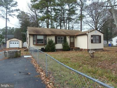 Charles County Single Family Home For Sale: 18249 Piedmont Drive