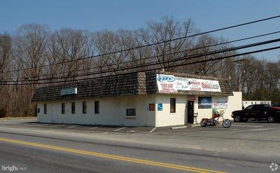 Anne Arundel County, Calvert County, Charles County, Prince Georges County, Saint Marys County Commercial For Sale: 2360 Old Washington Road