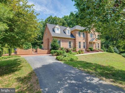 Hughesville Single Family Home For Sale: 16700 Swanson Cove Court