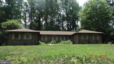 Waldorf Single Family Home For Sale: 2785 Berry Hills Road