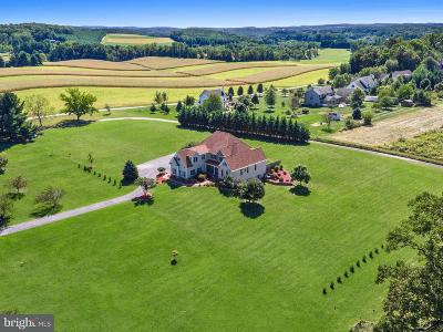 New Windsor Single Family Home For Sale: 1638 Stone Chapel Road