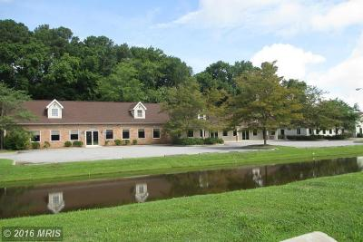 Kent County Commercial For Sale: 6262 Rock Hall Road
