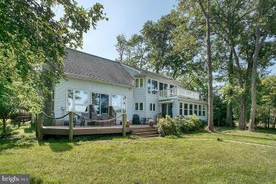 Chestertown Single Family Home For Sale: 22460 Fairgale Farm Lane