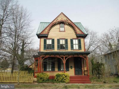 Chestertown Single Family Home For Sale: 200 Mill Street