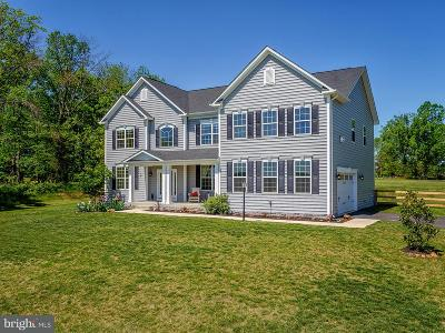 Lovettsville Single Family Home For Sale: 13175 Waterford View Court