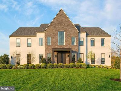 Ashburn Single Family Home For Sale: Abbey Knoll Court