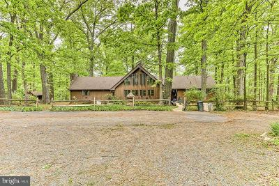 Loudoun County Single Family Home For Sale: 37858 Legard Farm Road