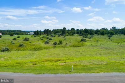 Lovettsville Residential Lots & Land For Sale: Palatine Place