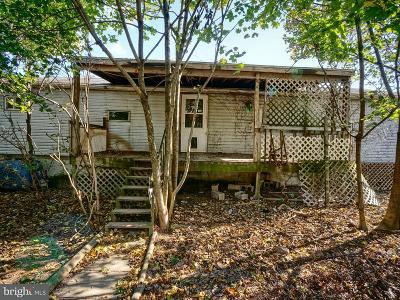 Cumberland County Single Family Home For Sale: 400 N Enola Road