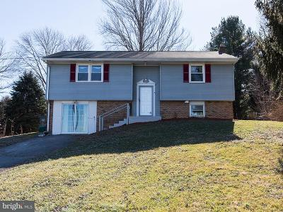Columbia Single Family Home For Sale: 1242 Iron Bridge Road