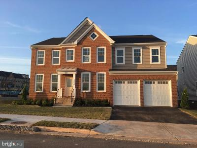 Ashburn Single Family Home Under Contract: 42292 Birnam Wood Place