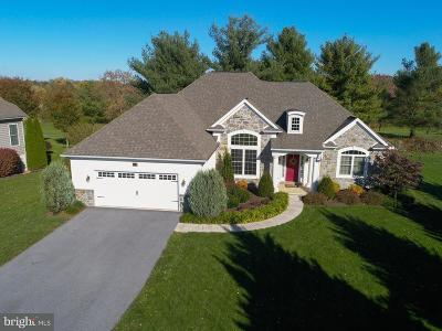 Millersville Single Family Home For Sale: 113 Garrity Road