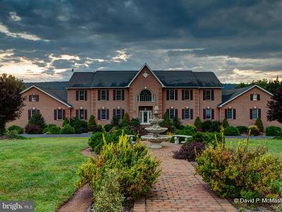 Hedgesville Single Family Home For Sale: 245 Turquoise Drive