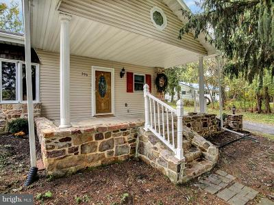 Enola Single Family Home For Sale: 706 Front Street