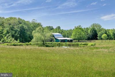 Louisa County Farm For Sale: 7303 Poindexter Road