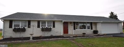 Single Family Home For Sale: 520 Pine Hill Road