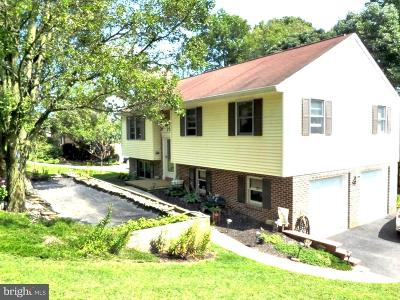 Conestoga Single Family Home For Sale: 285 Shenks Ferry Rd Road