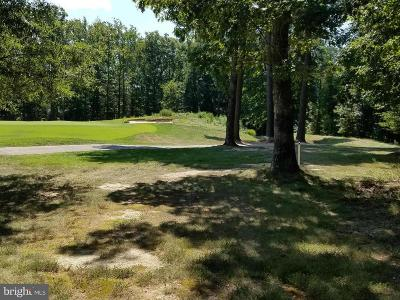 Spotsylvania Residential Lots & Land For Sale: 10501 Wildbrooke Court