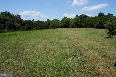 Spotsylvania County Commercial For Sale: 5201 Courthouse Road