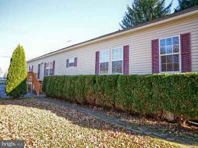 Hummelstown Single Family Home For Sale: 115 Remsburg Street