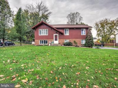 Leola Single Family Home For Sale: 86 Meadow View Drive