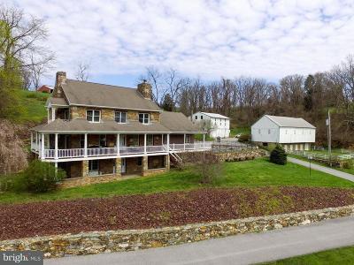 Dallastown Single Family Home For Sale: 585 Lioners Creek Road