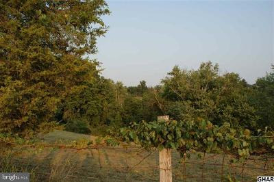 Mechanicsburg Residential Lots & Land For Sale: Andersontown Road