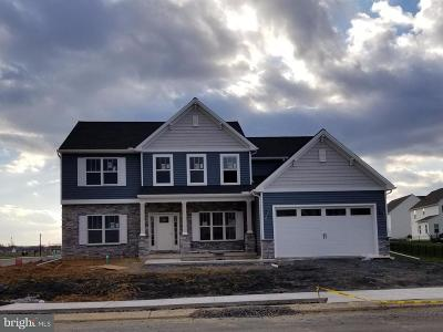 Mechanicsburg Single Family Home For Sale: Lot 146 Sansa Drive