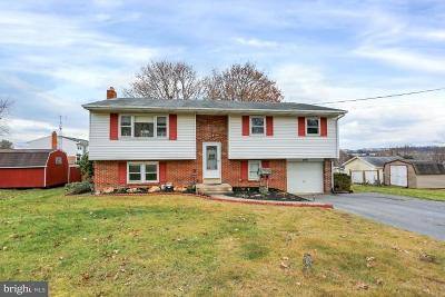 Hummelstown Single Family Home For Sale: 449 Sue Drive