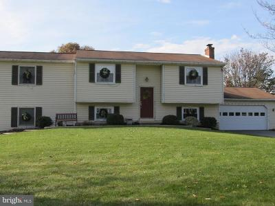 Landisville Single Family Home For Sale: 460 Holly Ann Dr Drive