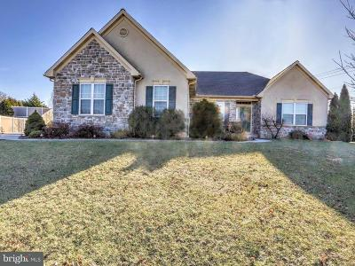 Ronks Single Family Home For Sale: 2502 Dolly Lane