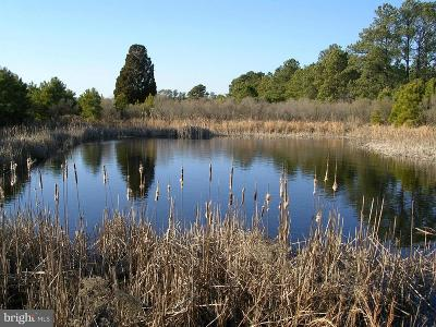Church Creek Residential Lots & Land For Sale: 2651 Lakesville Road