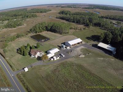 Dorchester County Farm For Sale: 2512 Toddville Road
