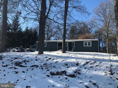 Dover Single Family Home For Sale: 55 Zeigler Road