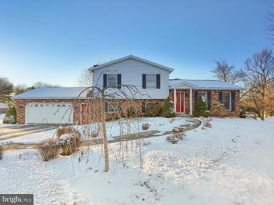 Cumberland County Single Family Home For Sale: 215 Briarwood Lane