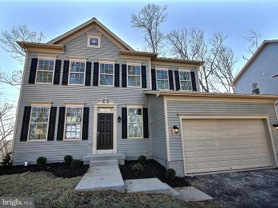 Frederick County Single Family Home For Sale: 7923 Yellow Springs Road
