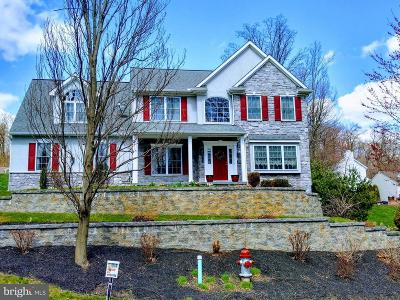 Single Family Home For Sale: 2680 Ironville Pike