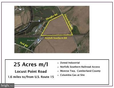 Residential Lots & Land For Sale: 00 S Locust Point Road