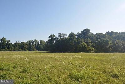 Cecil County Residential Lots & Land For Sale: Stemmers Run Road